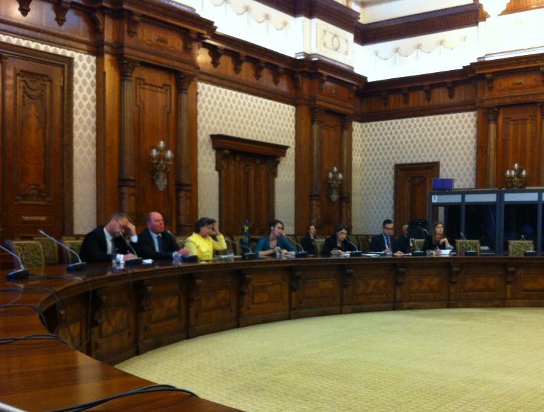 delegatie-suedia-29-10-13-1