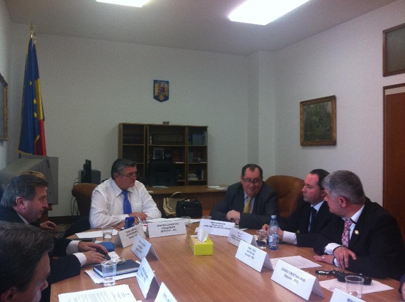 sedinta-comisiei-pentru-comunitatile-de-romani-din-afara-granitelor-tarii-18-februarie-2014-1